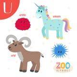 Letra U Animales lindos Animales divertidos de la historieta en vector Abucheo de ABC Fotografía de archivo
