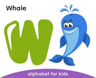 Letra verde W y ballena sonriente azul libre illustration