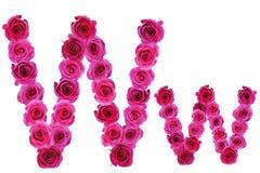 Letra w de rosas Imágenes de archivo libres de regalías