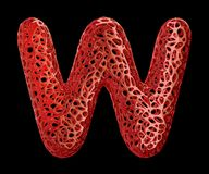 Letra W hecho del plástico rojo con los agujeros abstractos aislados en fondo negro 3d Imagenes de archivo