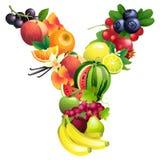 Letra Y integrada por diversas frutas con las hojas stock de ilustración