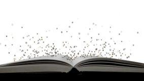 Letras aisladas del vuelo de la bruja del libro stock de ilustración
