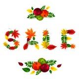 Letras bonitas compostas das folhas vermelhas, amarelas, verdes e alaranjadas bonitas da queda Imagem de Stock