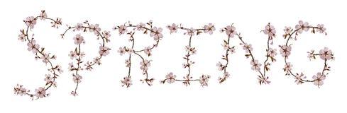 Letras da MOLA isoladas no fundo branco Imagens de Stock Royalty Free