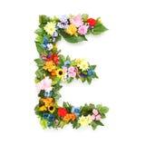 Letras das folhas e das flores Foto de Stock Royalty Free
