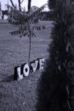 Letras de AMOR de la felpa Fotografía de archivo