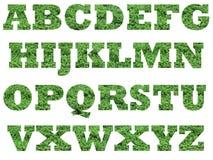 Letras de capital do alfabeto da grama ilustração do vetor