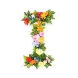 Letras de hojas y de flores Imagen de archivo libre de regalías