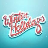 Letras de la Navidad de las vacaciones de invierno en un fondo azul Fotos de archivo libres de regalías