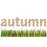 Letras de la palabra del otoño pequeñas ilustración del vector
