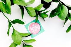 Letras de la primavera, lema de la primavera Poniendo letras a hola salte en etiquetas engomadas entre foliages verdes en la copi foto de archivo libre de regalías