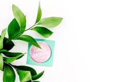 Letras de la primavera, lema de la primavera Poniendo letras a hola salte en etiquetas engomadas entre foliages verdes en la copi fotos de archivo