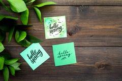 Letras de la primavera, lema de la primavera Poniendo letras a hola salte en etiquetas engomadas entre foliages verdes en la opin imagen de archivo libre de regalías
