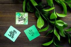 Letras de la primavera, lema de la primavera Poniendo letras a hola salte en etiquetas engomadas entre foliages verdes en la opin foto de archivo