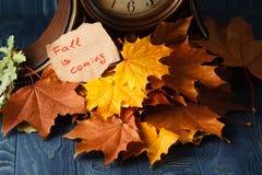 Letras de madeira da ação de graças feliz com uma abóbora e um pasto de outono Imagem de Stock Royalty Free
