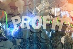 Letras de madeira do close up do lucro word-2 jpg Foto de Stock Royalty Free