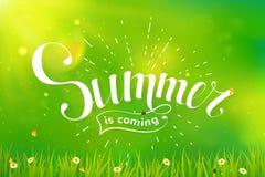 Letras del verano en fondo verde Imágenes de archivo libres de regalías