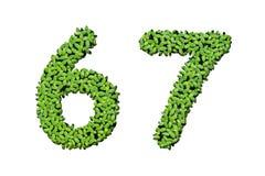 Letras do alfabeto da lentilha-d'água - número 6, 7 Foto de Stock