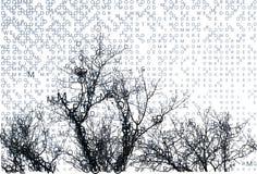 Letras do inverno que compor a paisagem com filiais. Fotos de Stock