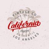 Letras escritas mano de California con el fondo de las palmas Imagen de archivo