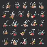 Letras florais bonitas Imagem de Stock Royalty Free