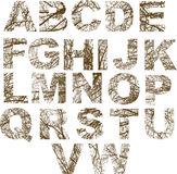 Letras Ornamented Fotografia de Stock Royalty Free