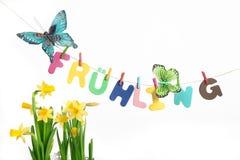 Letras que dicen la primavera con las mariposas al lado de narciso Imagen de archivo