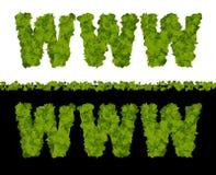 Letras verdes del WWW Fotos de archivo
