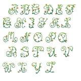 Letras verdes y brotes rojos Fotos de archivo libres de regalías