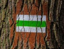 Letreiro do sentido da árvore Fotografia de Stock