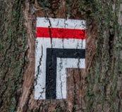 Letreiro do sentido da árvore Fotografia de Stock Royalty Free