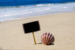 Letrero con la concha marina en la playa arenosa Imágenes de archivo libres de regalías