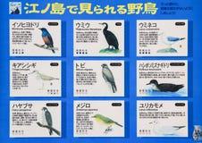 Letrero de los pájaros que habitan Foto de archivo libre de regalías