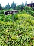 Letrero del gimnasio y del balneario, centro turístico tropical fotografía de archivo