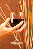 Lets Have a Toast Royalty Free Stock Photo