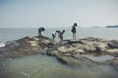 Lets se divierte en la playa Fotos de archivo libres de regalías