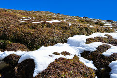 Lets start from the bottom. Patch of snows on the hills Royalty Free Stock Photography