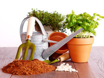 Lets start gardening. Photo shows gardening items like watering can, seed, growing media, plants, garden fork and scoop in front of a white background Royalty Free Stock Photo
