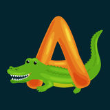 Letter A with Aligator animal for kids abc education in preschool. Aligator animal and letter A for kids abc education in preschool.Cute animals letters english Vector Illustration
