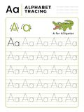 Letter A Alphabet Tracing Book with Example and Funny Alligator Crocodile Cartoon. Preschool worksheet for practicing fine motor royalty free illustration