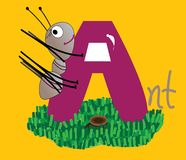 The letter A and an Ant Royalty Free Stock Images