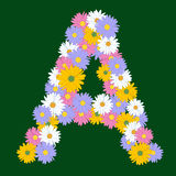 Letter A - Asters Royalty Free Stock Image