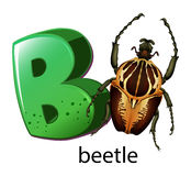 A letter B for beetle Stock Images