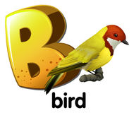 A letter B for bird Stock Photos