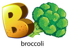 A letter B for brocolli Stock Photography