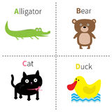 Letter A B C D Alligator Cat Bear Duck Zoo alphabet. English abc with animals Education cards for kids  White background F. Lat design Vector illustration Stock Images