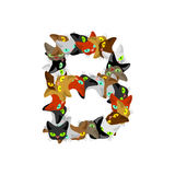Letter B Cat font. Pet alphabet symbol. home animal ABC sign Royalty Free Stock Image
