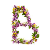 The letter «B» made of various natural small flowers. royalty free stock photography