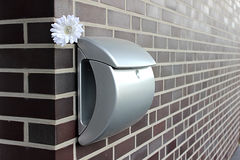 The letter box. Inbox with a flower on the wall Royalty Free Stock Images