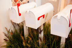 Letter boxes in garden Royalty Free Stock Photos